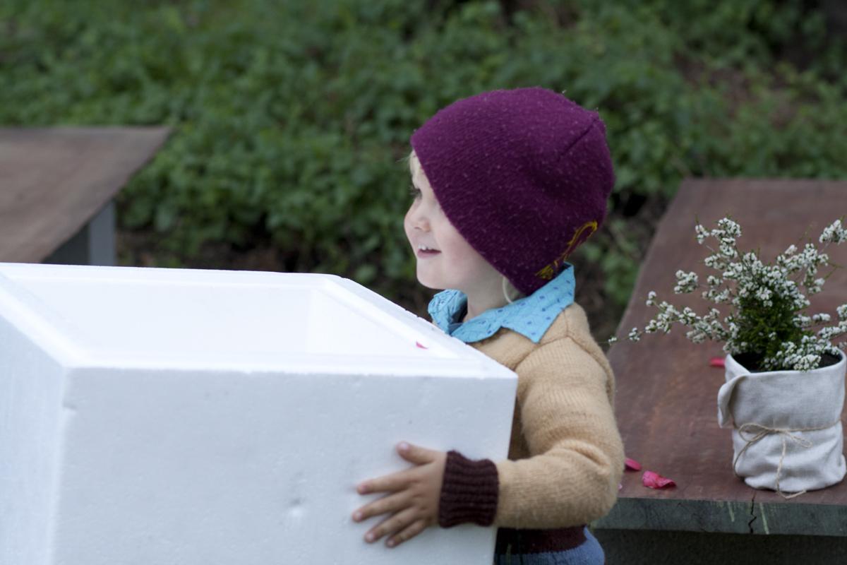IMG_8217 Lennox and box